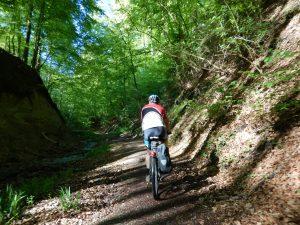 Mountainbiking in Baden-Württemberg