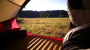Blick aus dem Zelt im Nordschwarzwald